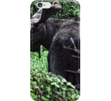 Bull Moose Algonquin iPhone Case/Skin