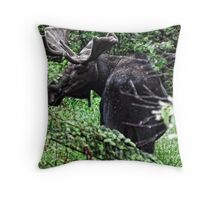 Bull Moose Algonquin Throw Pillow