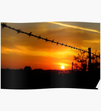 Barbed wire sunset (landscape) Poster