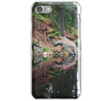 Jack Lake Algonquin iPhone Case/Skin