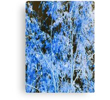 MOODY (X-Scapes) Canvas Print