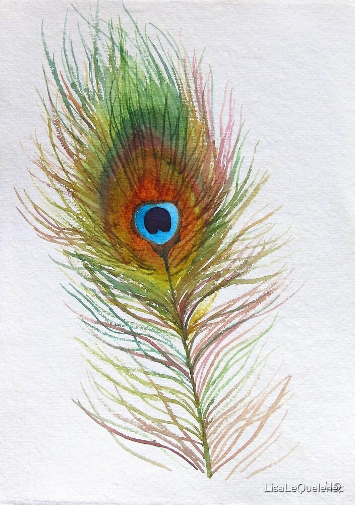 Peacock feather watercolour study by LisaLeQuelenec