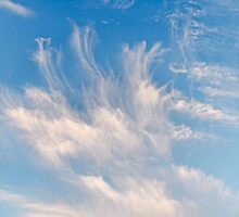 Clouds (20140908h) by robpalmer