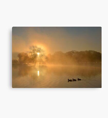 Landscape with Three Ducks Canvas Print