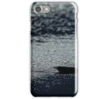Swan in silhoette. An excelptional image for large prints.  iPhone Case/Skin