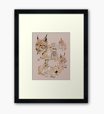 Spanish Lynx Framed Print