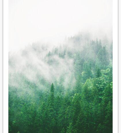 Woodland Fog Sticker