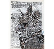 Harpy Eagle on Dictionary Paper Photographic Print