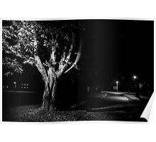 Rural street scene at night Poster
