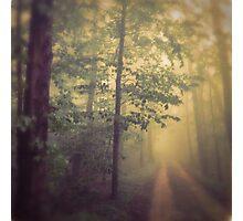 Neverland Photographic Print
