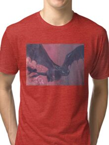 Toothless Flies Tri-blend T-Shirt