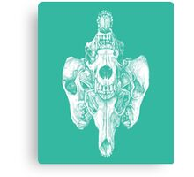 Around the Coyote - Teal Canvas Print