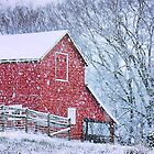 """""""Barn Bluster""""... prints and products by © Bob Hall"""