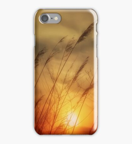 Following The Sun iPhone Case/Skin
