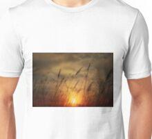 Following The Sun Unisex T-Shirt