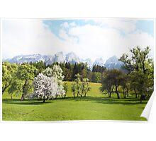 Green Spring Austrian Landscape Poster