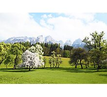Green Spring Austrian Landscape Photographic Print