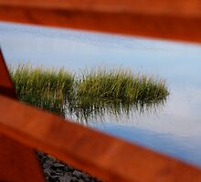 Through the Railing by Gilda Axelrod
