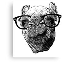 Who Needs to Know! Hipster Camel Hump Day Canvas Print
