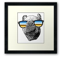 Who Needs to Know! Hipster Camel Hump Day Framed Print