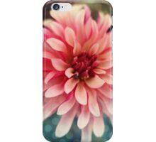 Chrysanthemum II iPhone Case/Skin