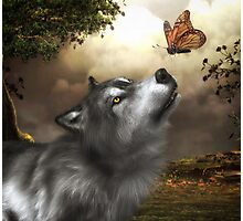 Butterfly Wolf Photographic Print
