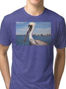 San Diego Pelican Tri-blend T-Shirt