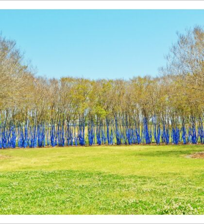 Blue Forest Sticker