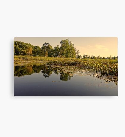 Lake Reflection Water Landscape Photo Canvas Print