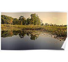 Lake Reflection Water Landscape Photo Poster