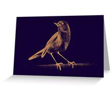 Drawing of hummingbird. Illustration Greeting Card
