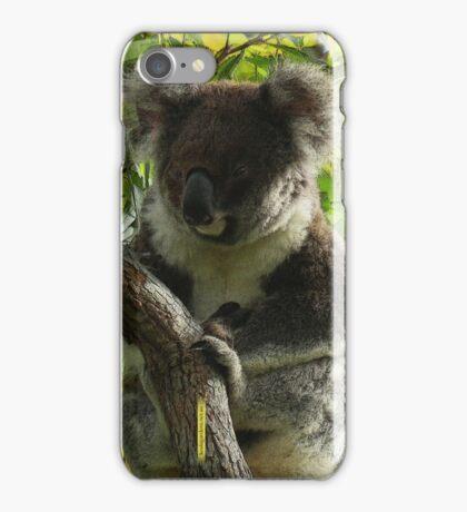 Koala autumn colours iPhone Case/Skin