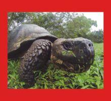 Galapagos tortoise One Piece - Long Sleeve