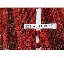 Warminster Town Hand-Knitted Poppies Photographic Print