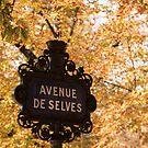 Paris Street Signs - 3 ©  by © Hany G. Jadaa © Prince John Photography