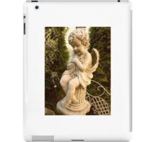 retro photo iPad Case/Skin