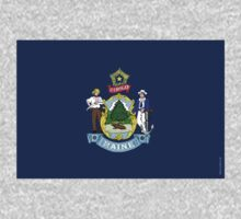 Maine State Flag by USAswagg