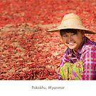 Pakokhu, Myanmar by Jacinthe Brault
