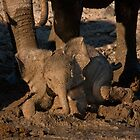 Baby's first mudbath by Owed to Nature