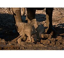 Baby's first mudbath Photographic Print