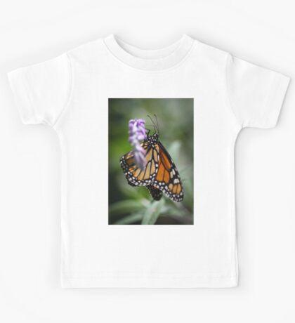 Monarch Danaus Plexippus Kids Tee