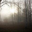Light Through The Fog by Debbie Oppermann