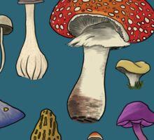 Mushroom Botanicals Sticker