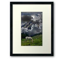 3324 Framed Print