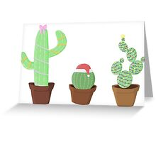 Christmas Cactus collection  Greeting Card