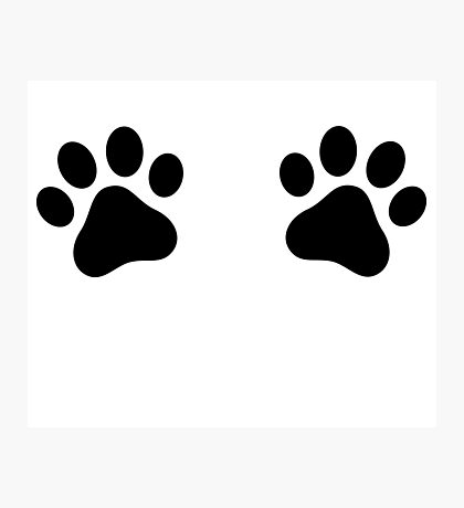 Pet Paws Photographic Print