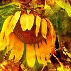 Purely Gold by Nadya Johnson