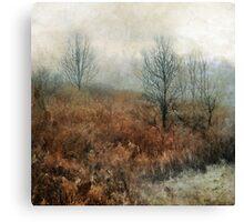 foggy landscape Canvas Print