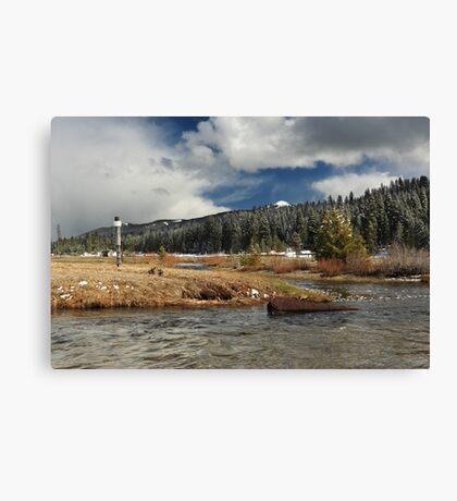 Deer Creek Meadows Canvas Print