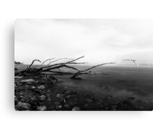 White storm Canvas Print